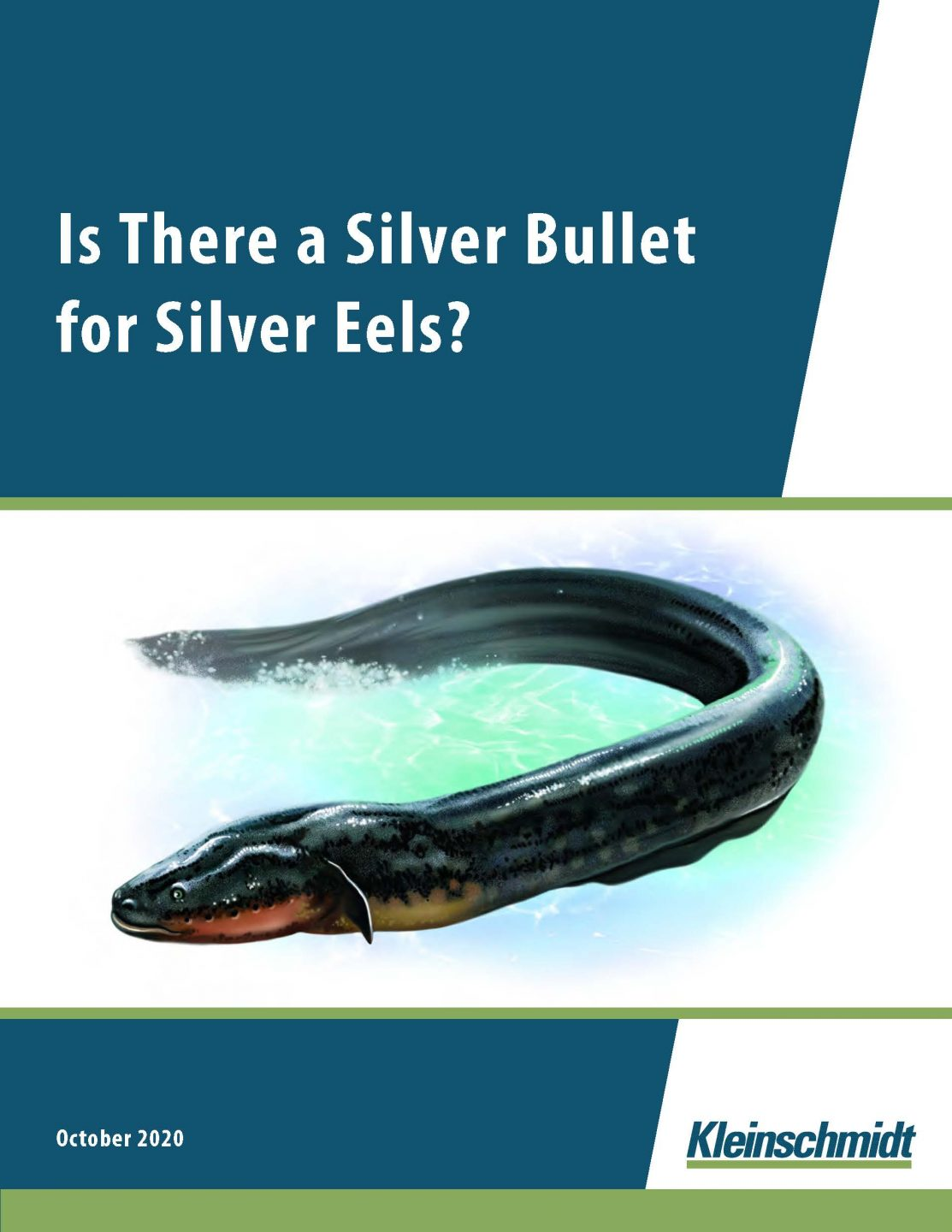 Silver Bullet for Silver Eels